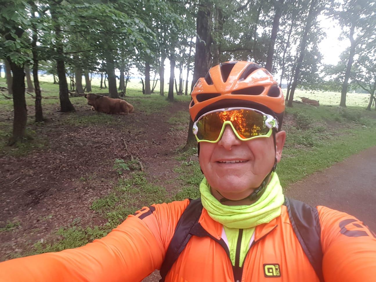 Veluwe 2018 langhoorn in het natuurpark